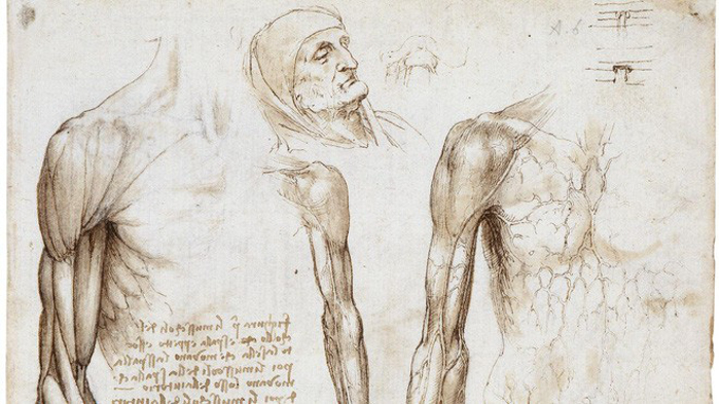 Bat ngo khi biet xe tang, may bay deu lay y tuong cua... Leonardo da Vinci-Hinh-3