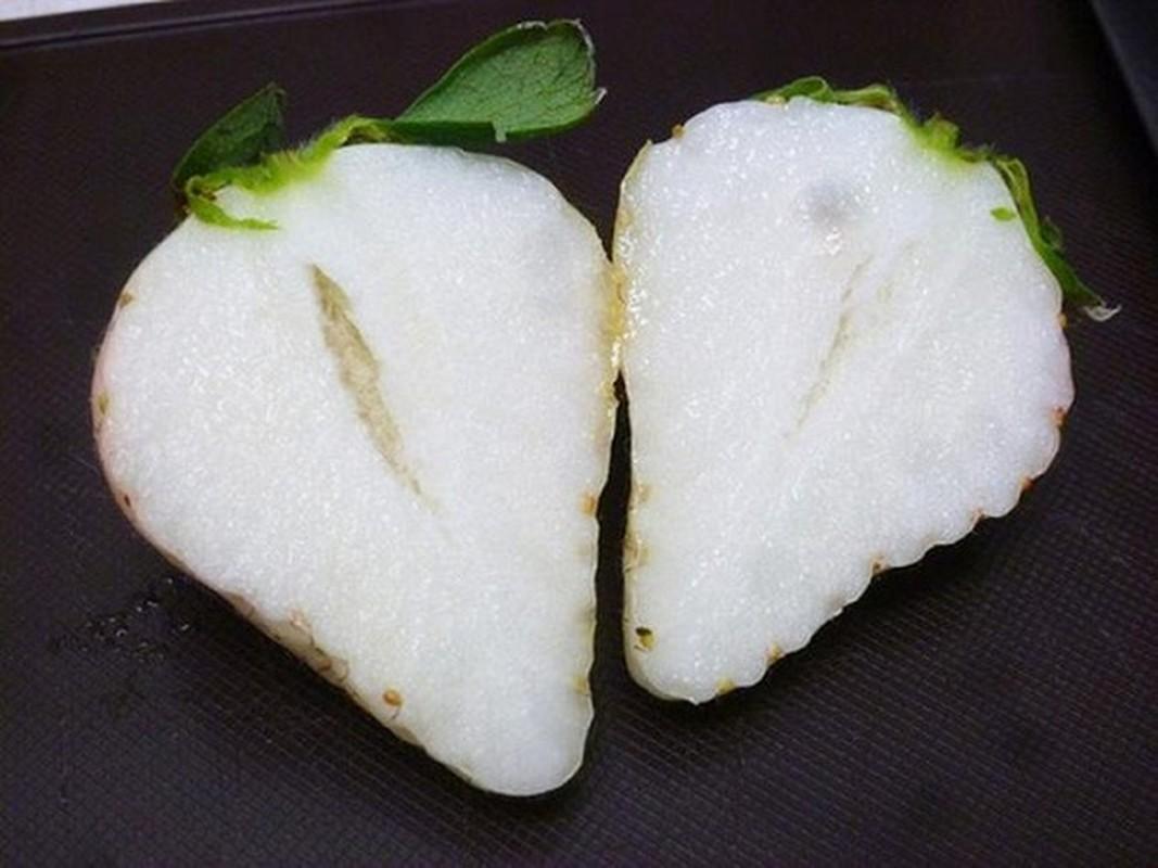 Nhung trai cay co mau sac cuc di an chua bi mat gay soc-Hinh-11