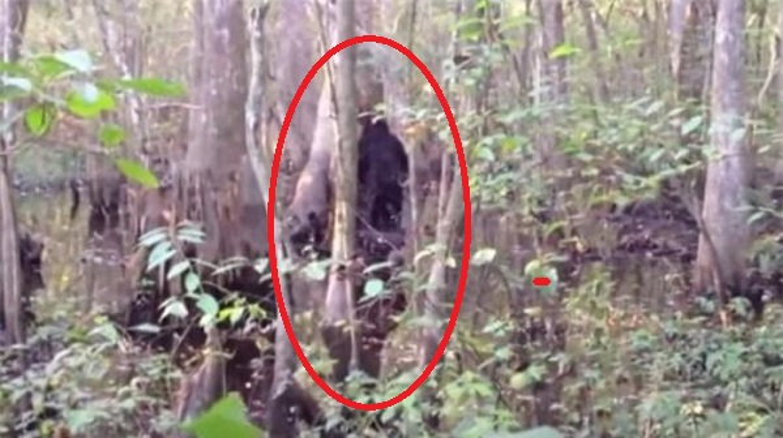 """""""Bat qua tang"""" nhung lan quai vat Bigfoot xuat hien... treu con nguoi-Hinh-9"""