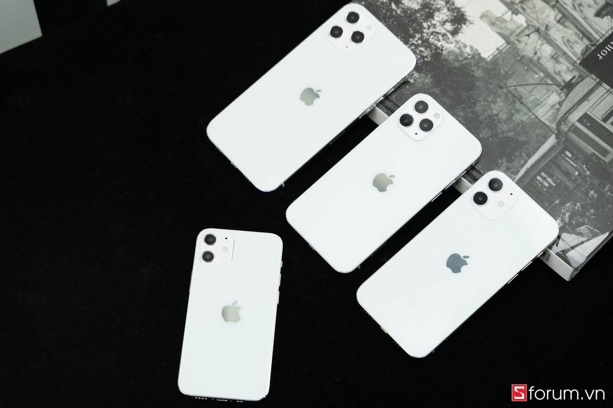 """Can canh 4 chiec iPhone """"hot"""" nhat sap ra mat-Hinh-12"""