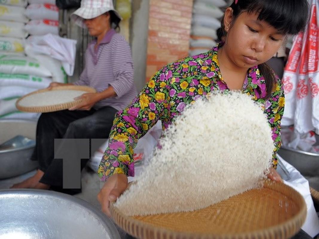 Loại gạo nào nhièu giá trị dinh duõng nhát?-Hinh-6