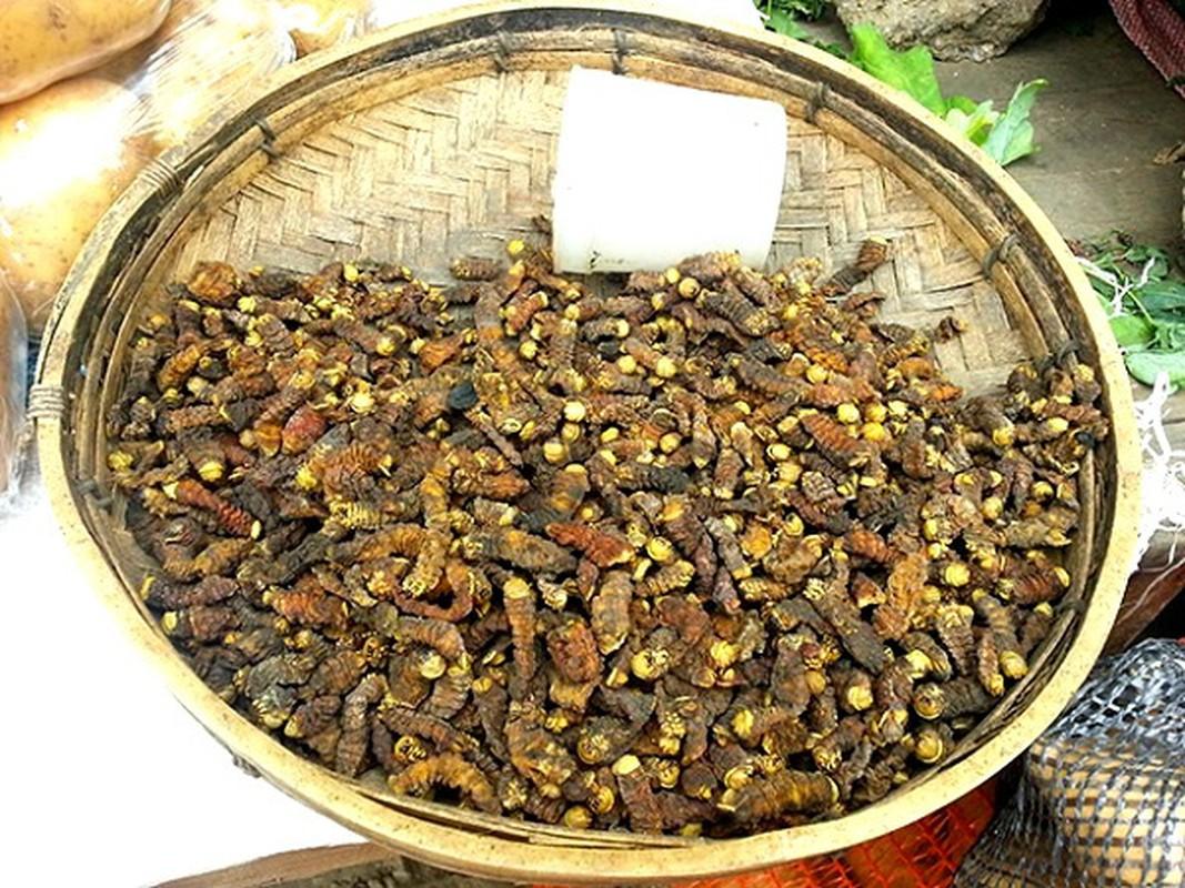 Kham pha mon sau kinh di nhung lai la dac san cua chau Phi-Hinh-9