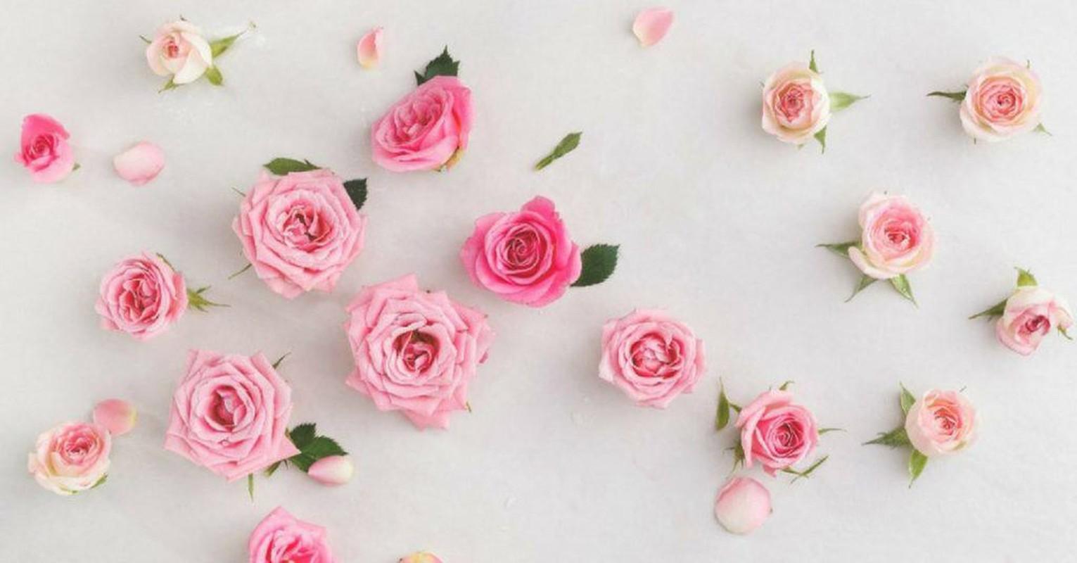 Cong thuc mat na hoa hong danh bay mun boc chi trong 2 ngay-Hinh-8