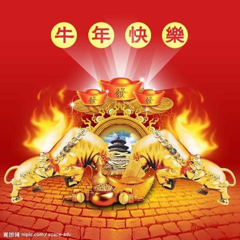 Sau ram thang tu, 4 con giap tinh ai, su nghiep vut len huong-Hinh-11