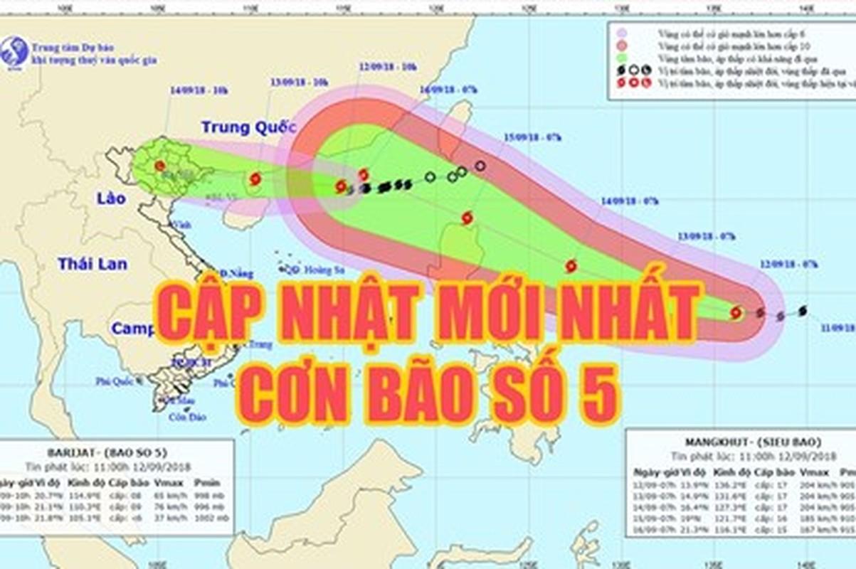 Bao chong sieu bao, nguoi dan Ha Noi lo tich tru thuc pham