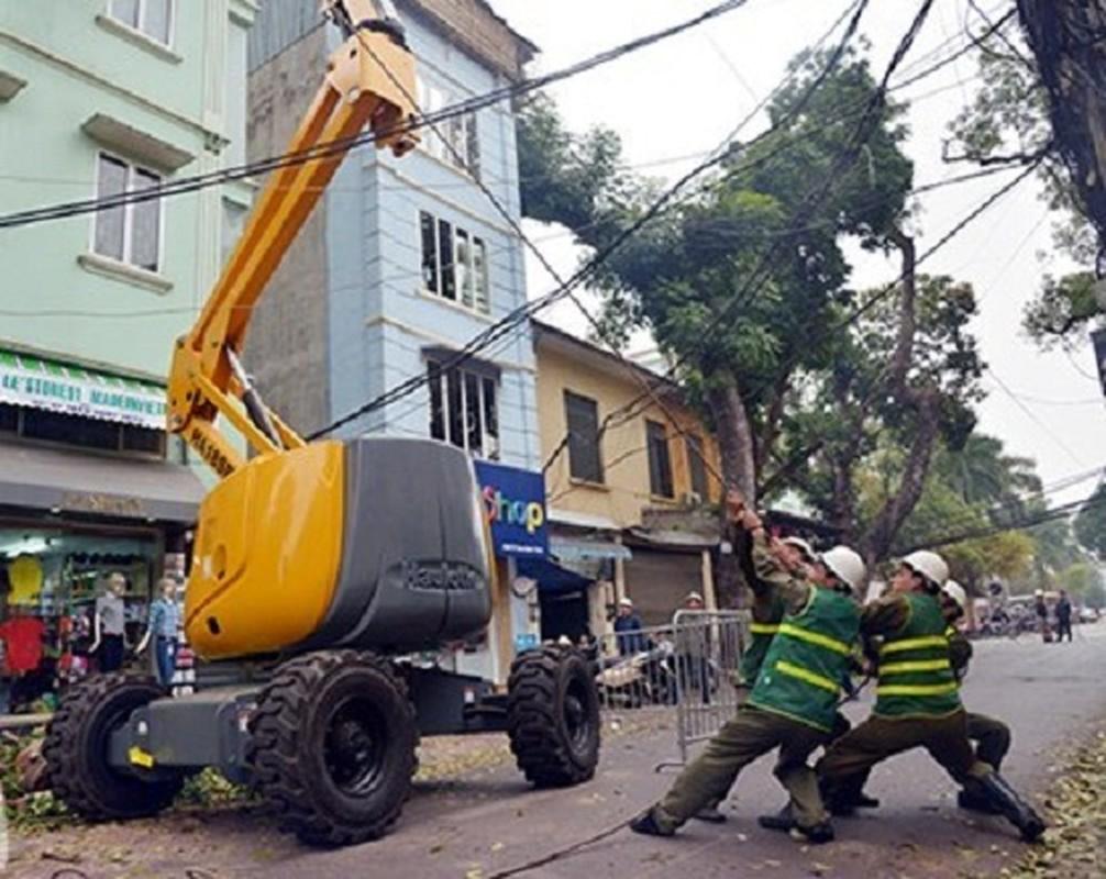 "Can canh xe cat tia cay gia ""soc"" o Ha Noi-Hinh-2"
