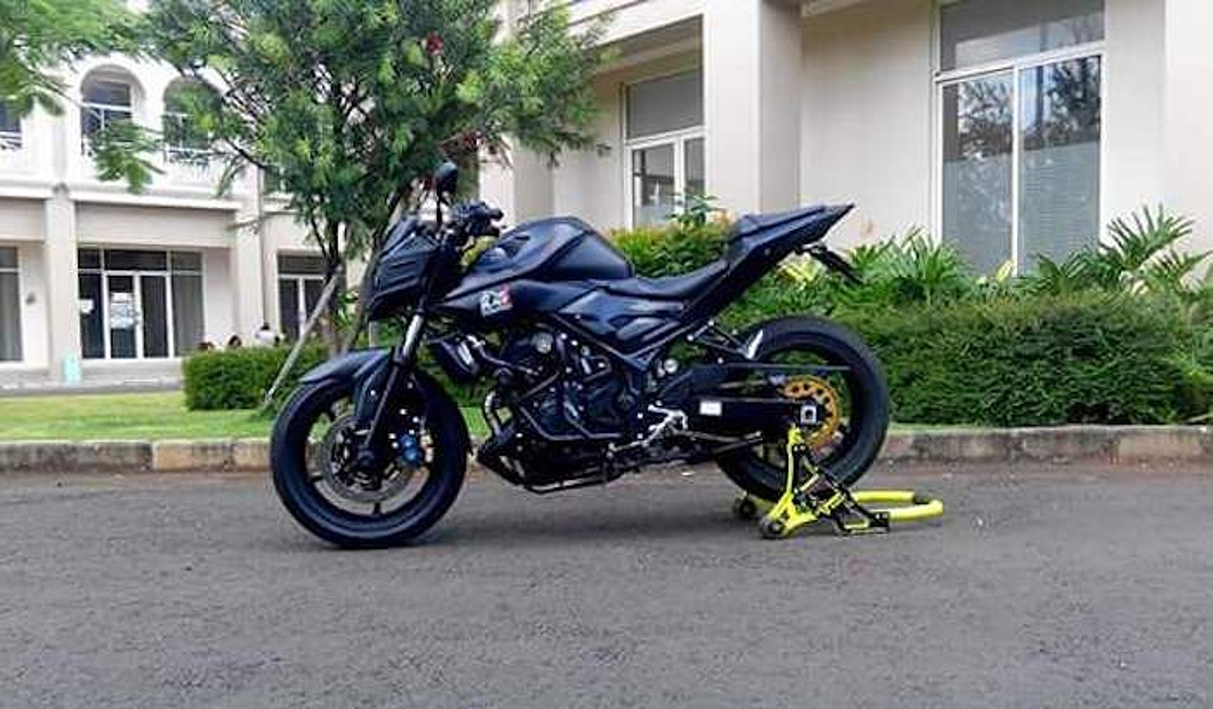 "Dan choi ""bien hinh"" Yamaha MT-25 thanh sieu moto-Hinh-2"