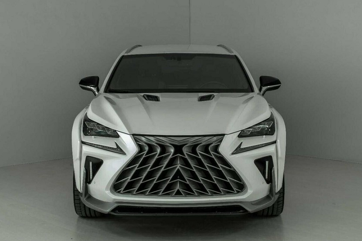 "Ngam Lexus RX va NX ""hoang dai"" duoi tay dan choi Nga-Hinh-5"