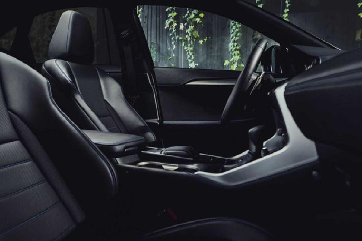 Ra mat Lexus NX 300h F Sport 2021 dac biet, hon 1 ty dong-Hinh-4