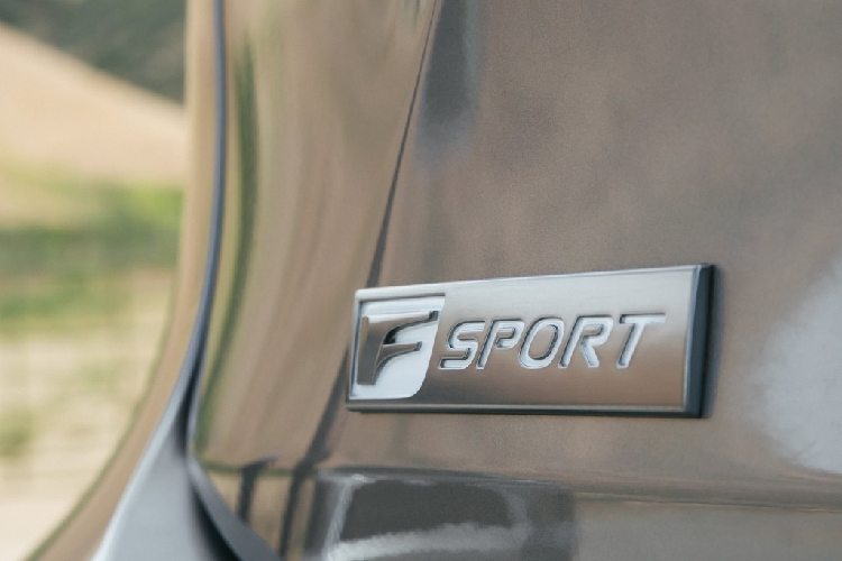 Ra mat Lexus RX 350 va RX 450h dac biet hon 1 ty dong-Hinh-8