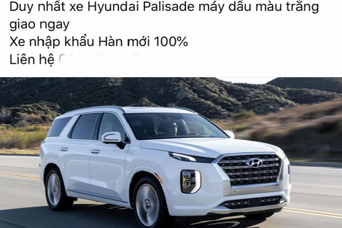 Dai ly chao ban Hyundai Palisade tai Viet Nam hon 2,5 ty dong-Hinh-3