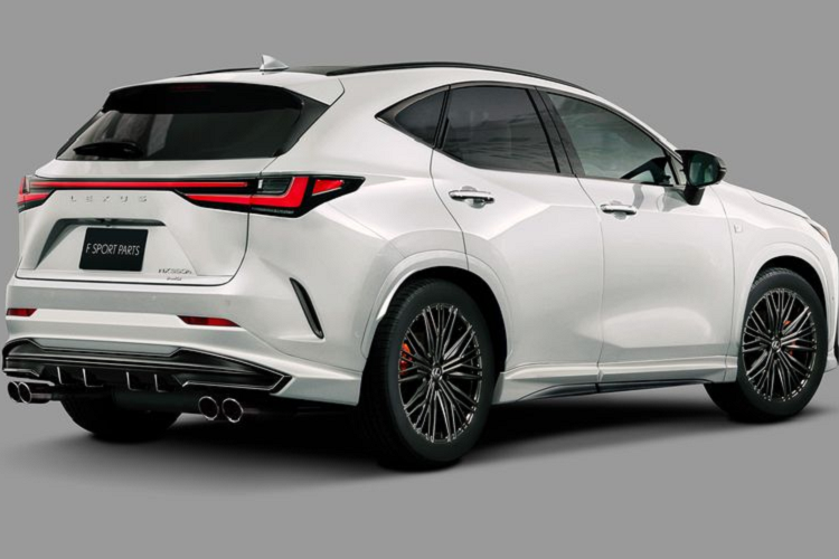 "Lexus NX 2022 ""ha guc"" khach mua kho tinh voi phu kien TRD-Hinh-3"