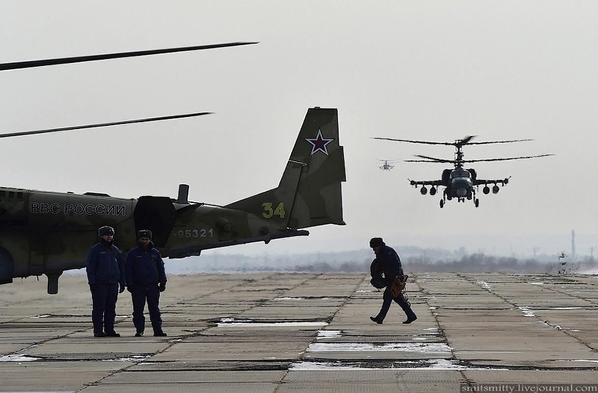 Dot nhap can cu truc thang Ka-52 nam sat Trung Quoc-Hinh-2