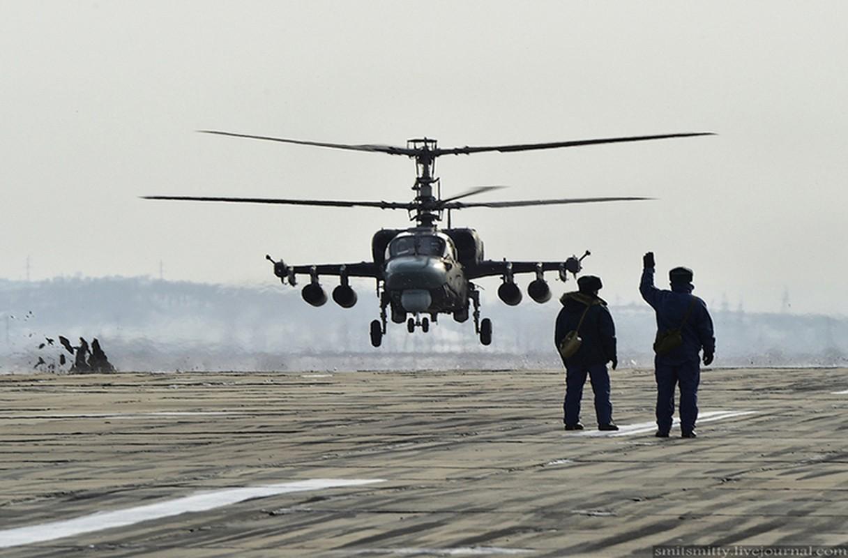Dot nhap can cu truc thang Ka-52 nam sat Trung Quoc-Hinh-3