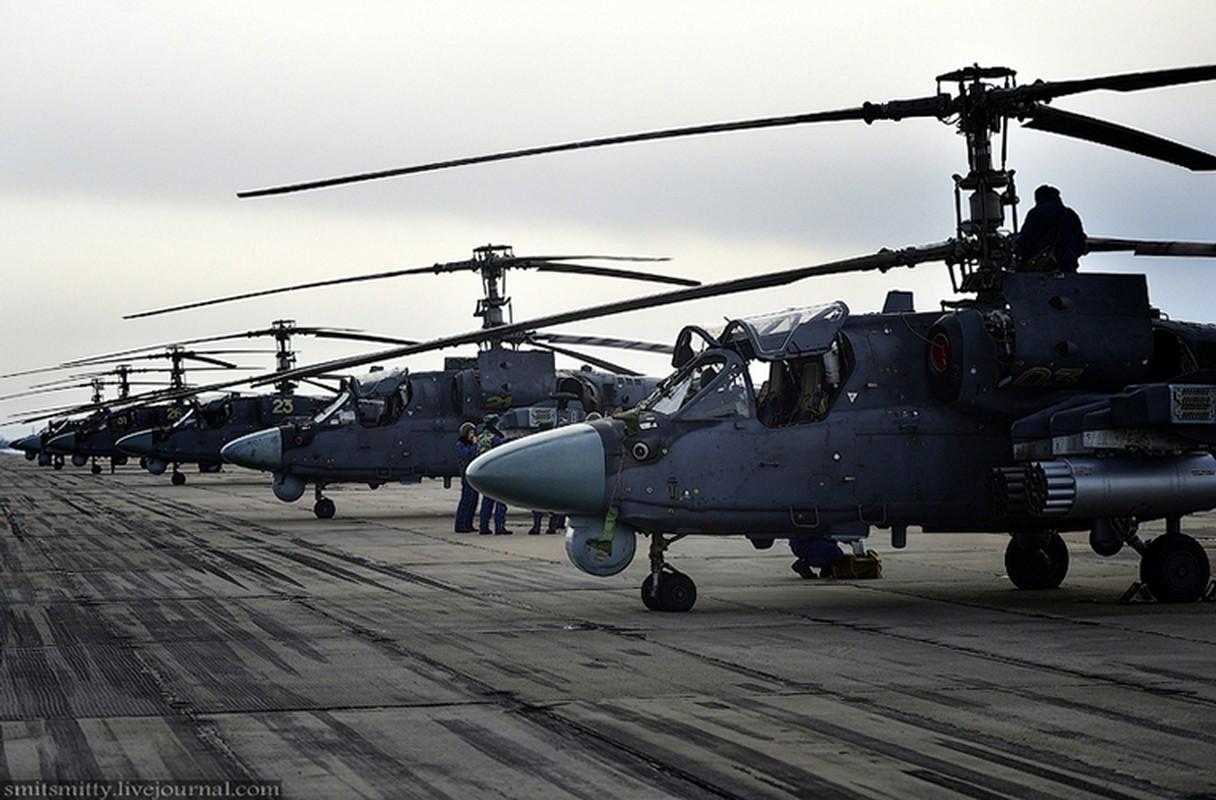 Dot nhap can cu truc thang Ka-52 nam sat Trung Quoc-Hinh-9