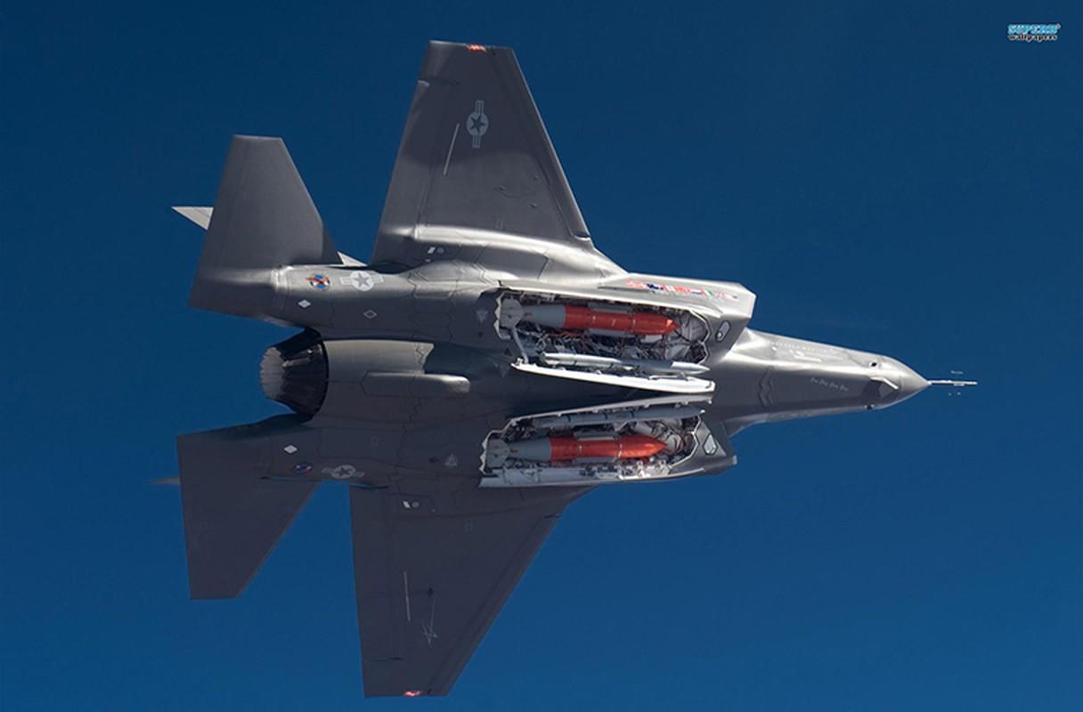Kho do: Phat trien xong, My khong con tien mua F-35-Hinh-6