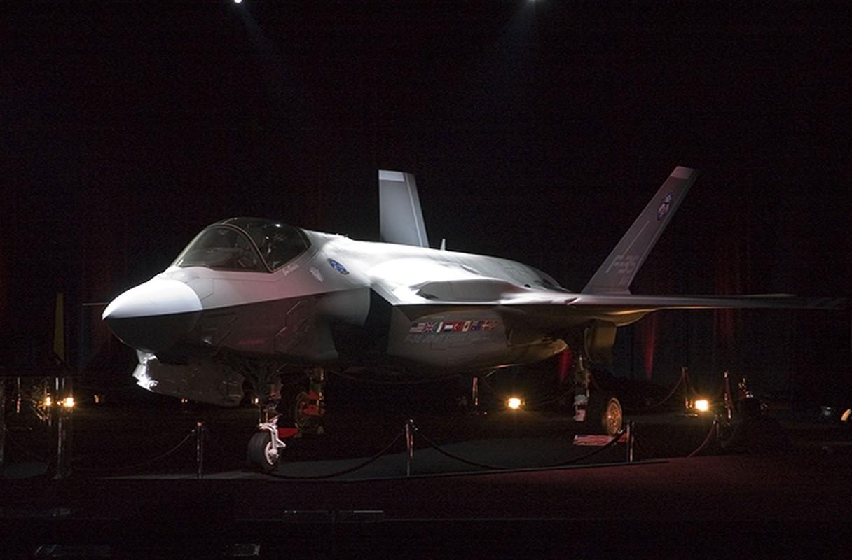 Kho do: Phat trien xong, My khong con tien mua F-35-Hinh-8