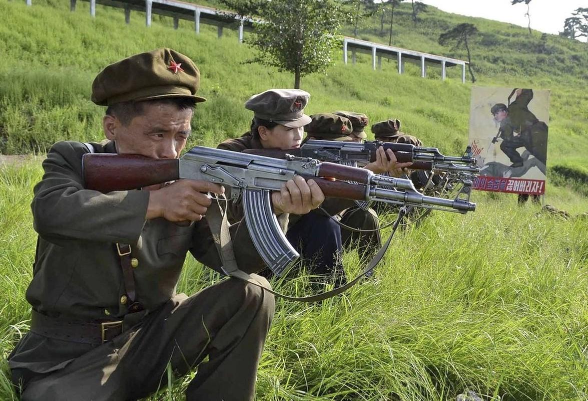 """Bat ngo """"gay soc"""": Sung AK Trieu Tien xuat hien o Syria-Hinh-7"""