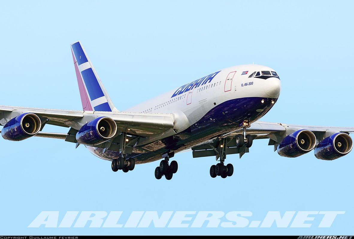 """Soi ung vien """"tong tien"""" sieu van tai co An-124 ve vuon-Hinh-3"""