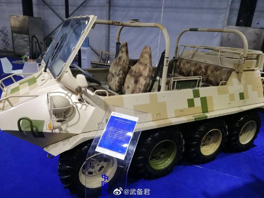 Muon hinh van trang xe thiet giap Trung Quoc xuat khau-Hinh-11
