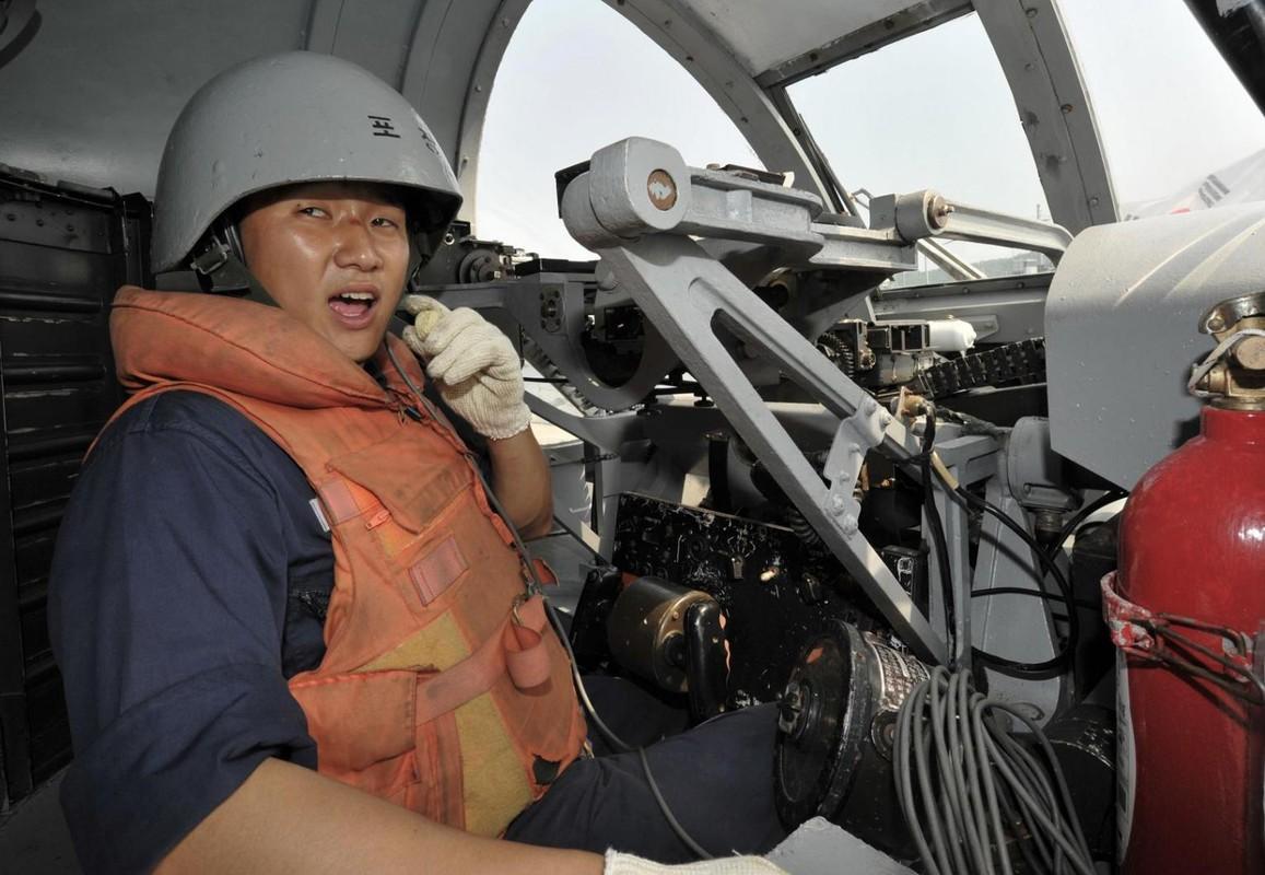Phao ham Sea Vulcan doc nhat cua Hai quan Viet Nam: Nen som thay the?-Hinh-7