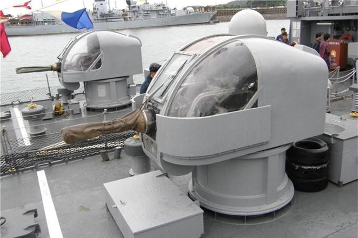 Phao ham Sea Vulcan doc nhat cua Hai quan Viet Nam: Nen som thay the?-Hinh-9