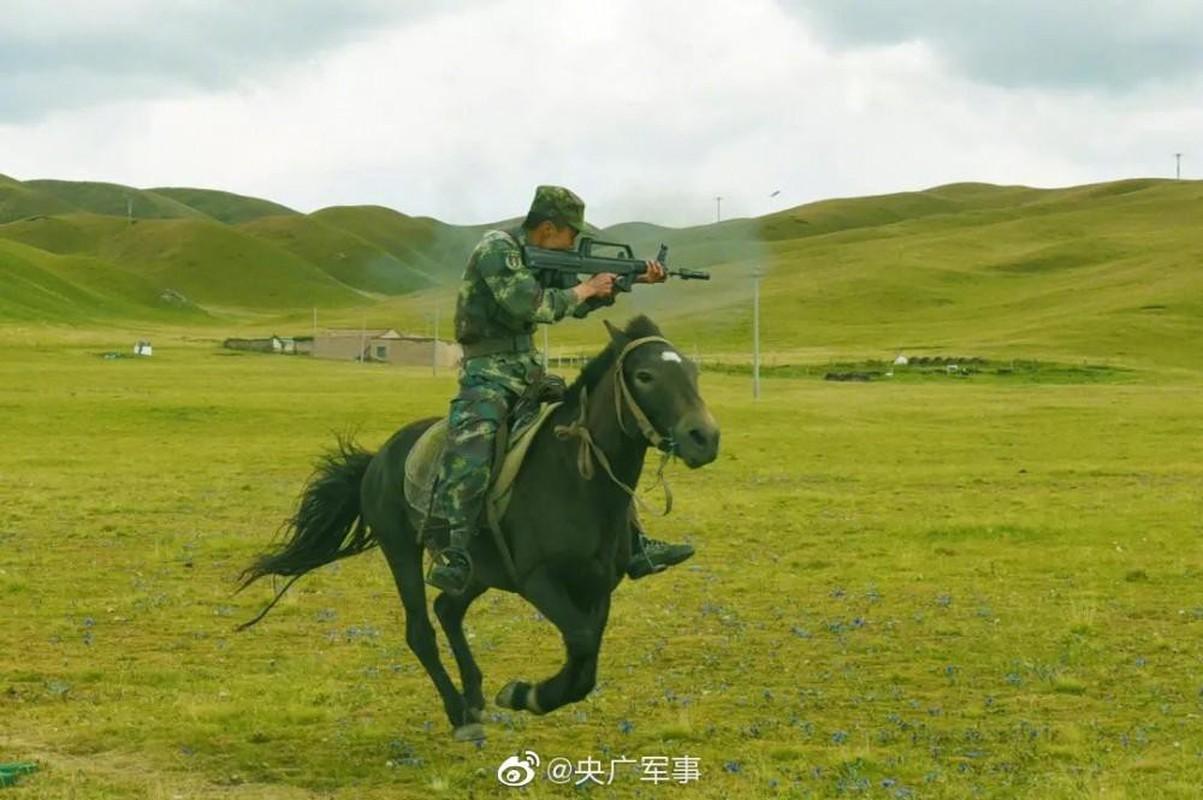 Suc manh, vai tro cua ky binh trong nhung doi quan hien dai-Hinh-8