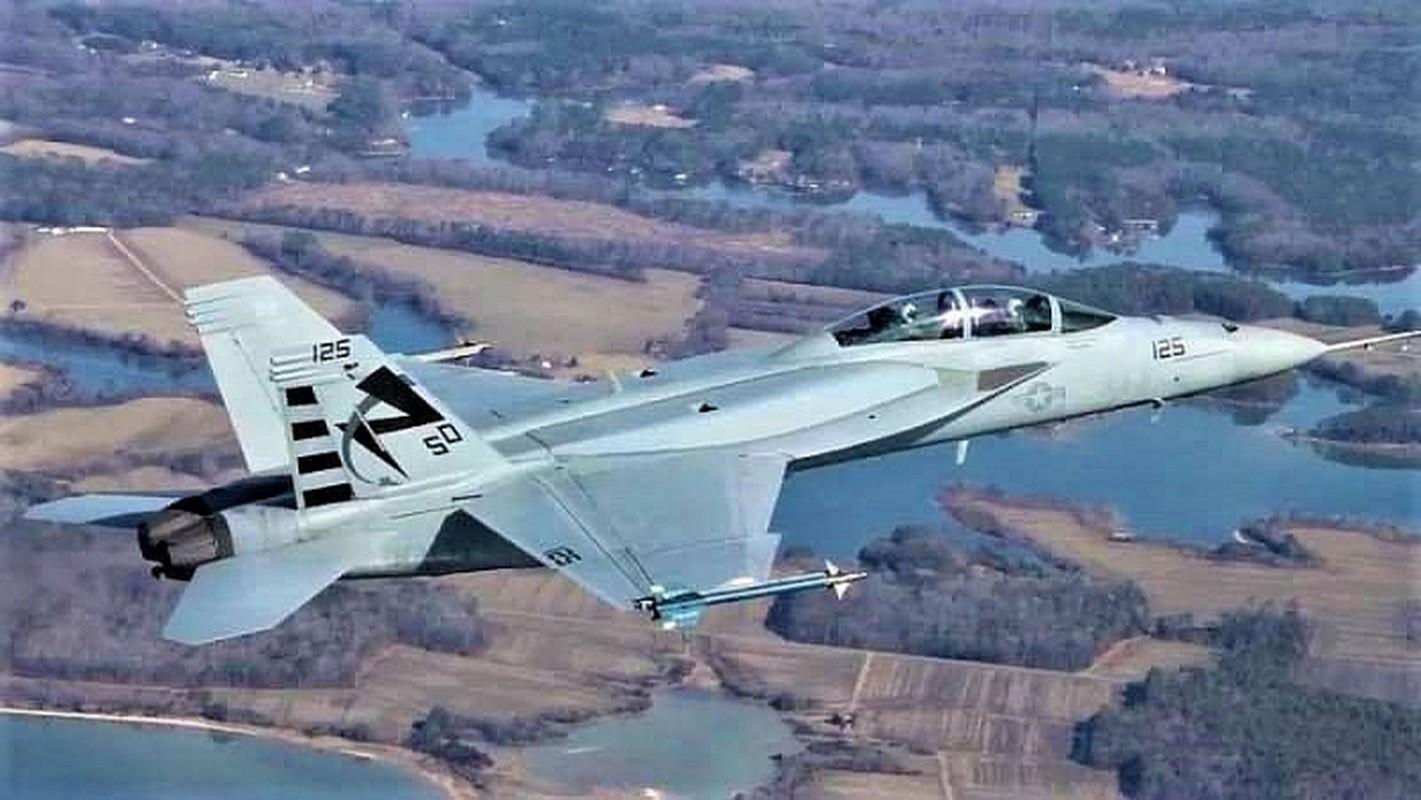 F-18E/F van la tiem kich ham chu luc cua My den 20 nam nua-Hinh-15