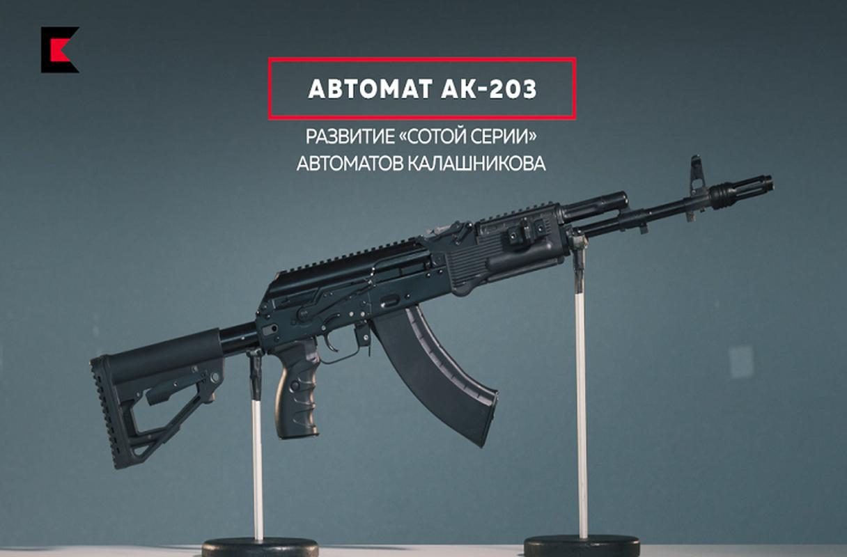 Vi sao An Do trang bi sung AK-203 cho luc luong chien dau cao nguyen?-Hinh-6