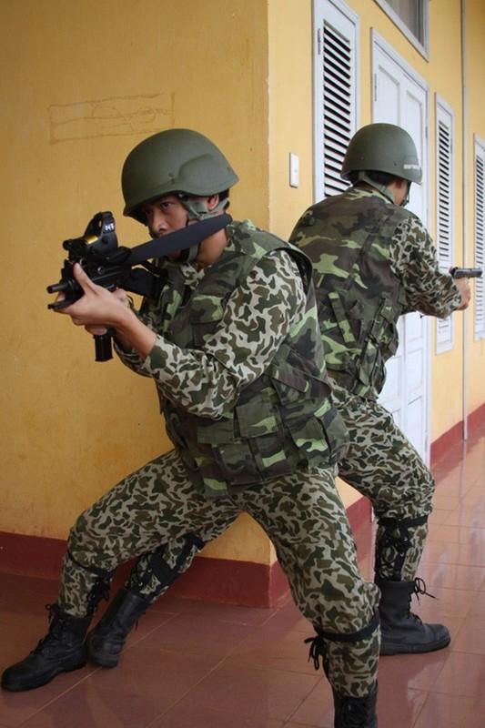 Dau an cong nghe quoc phong Israel noi bat trong QDND Viet Nam (P1)-Hinh-10