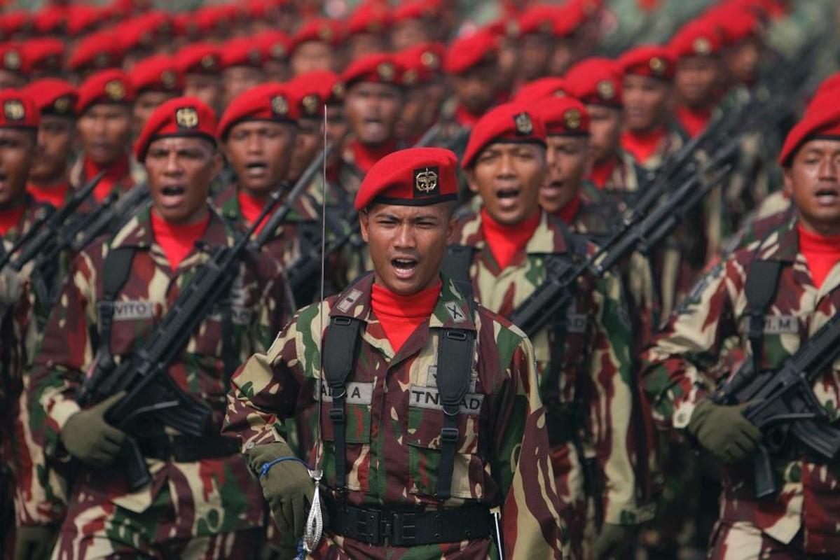 Tim hieu ve quan phuc nguy trang cua cac quan doi ASEAN (P2)-Hinh-14