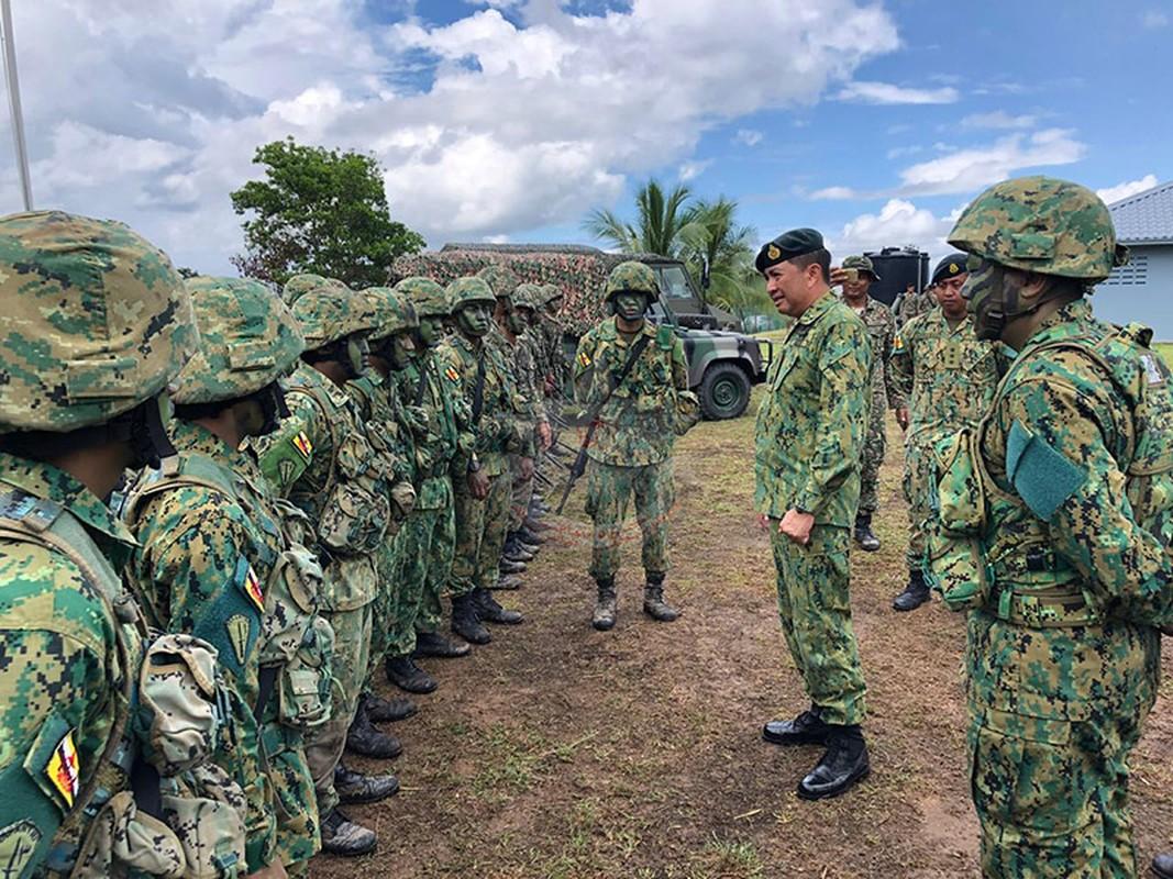 Tim hieu ve quan phuc nguy trang cua cac quan doi ASEAN (P2)-Hinh-9