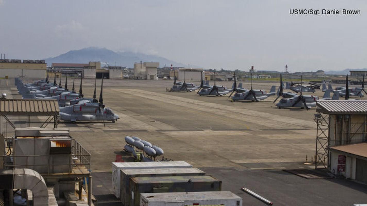 F-22A va F-35B My tai Nhat Ban: Cap song kiem