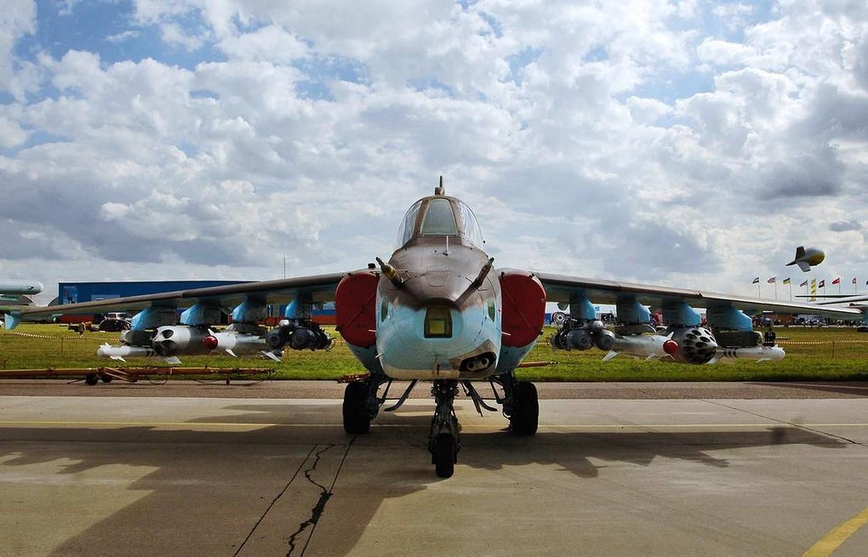 Mot thoi huy hoang nay con dau cua Khong quan Ukraine-Hinh-3