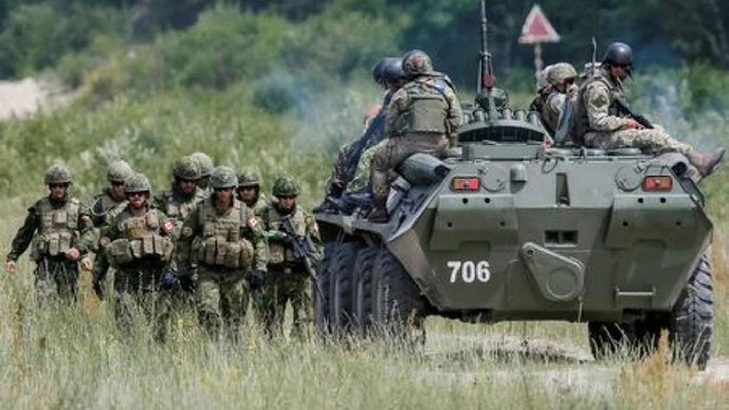 Bo binh Quan doi Canada: Hoa ra khong chi la san sau cua My-Hinh-10