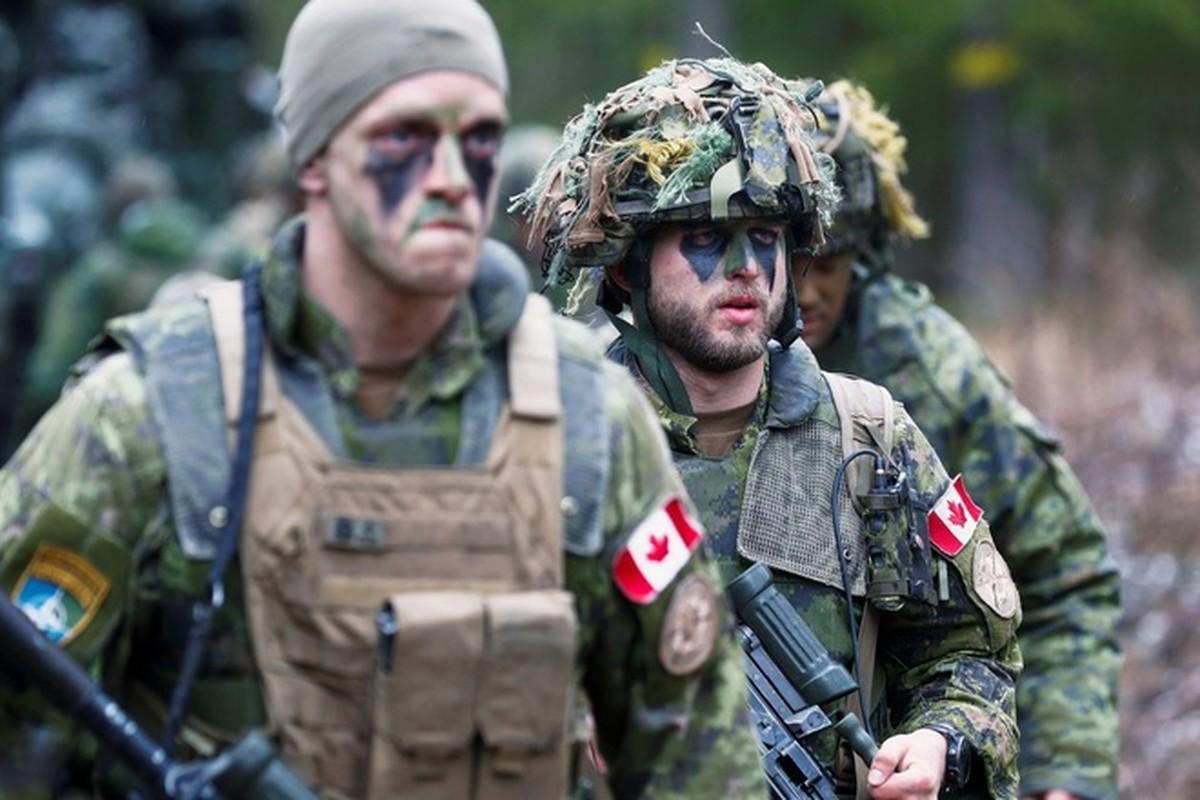 Bo binh Quan doi Canada: Hoa ra khong chi la san sau cua My-Hinh-11