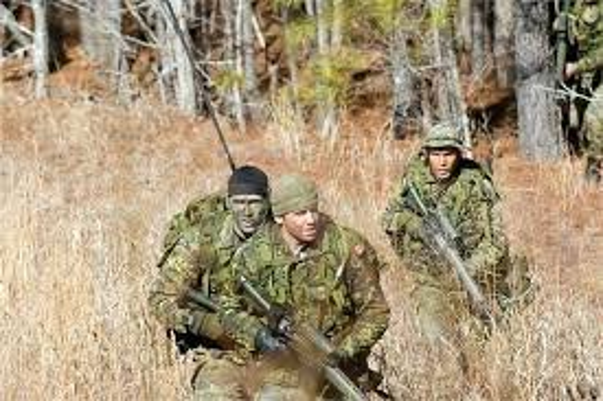 Bo binh Quan doi Canada: Hoa ra khong chi la san sau cua My-Hinh-12