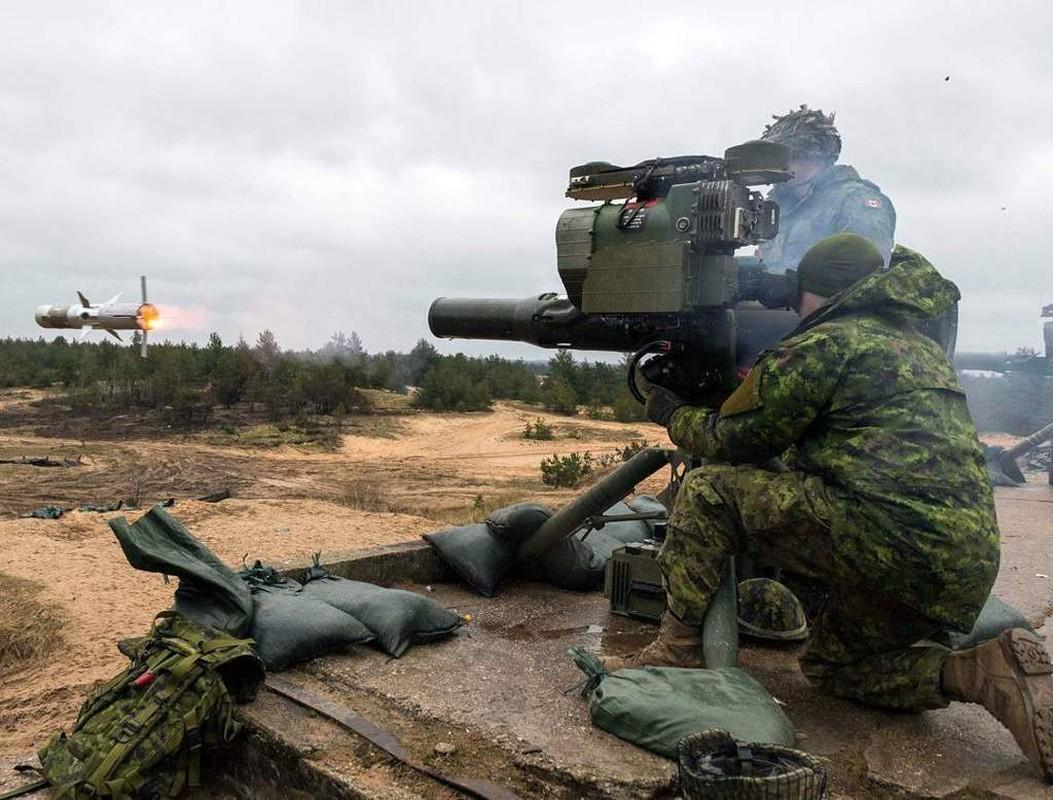 Bo binh Quan doi Canada: Hoa ra khong chi la san sau cua My-Hinh-13