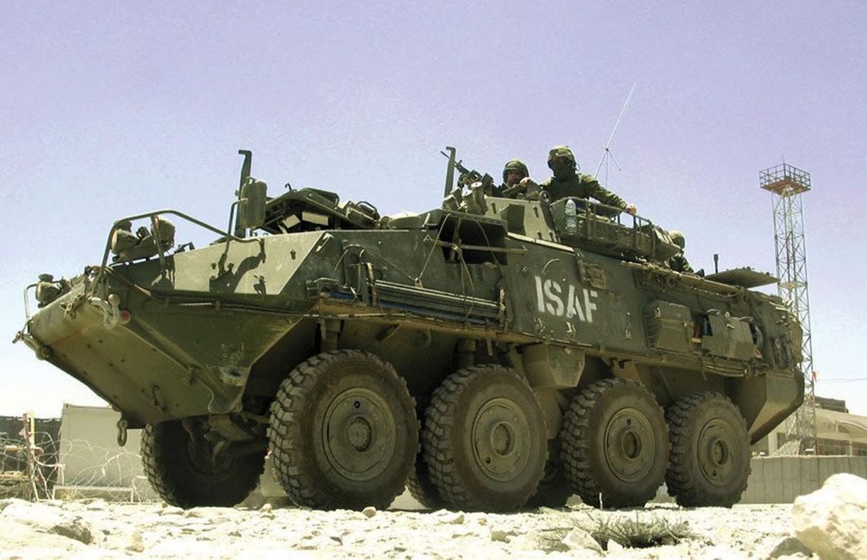 Bo binh Quan doi Canada: Hoa ra khong chi la san sau cua My-Hinh-3