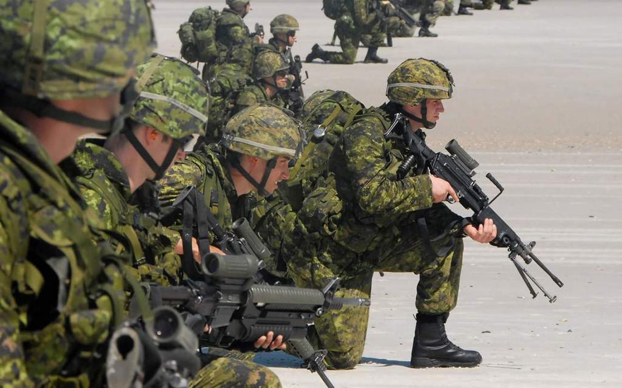 Bo binh Quan doi Canada: Hoa ra khong chi la san sau cua My-Hinh-8