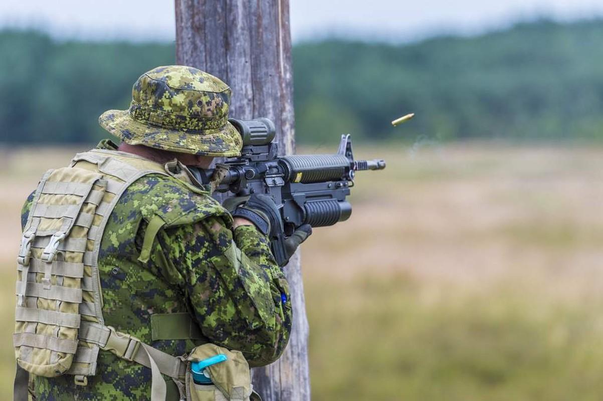 Bo binh Quan doi Canada: Hoa ra khong chi la san sau cua My-Hinh-9