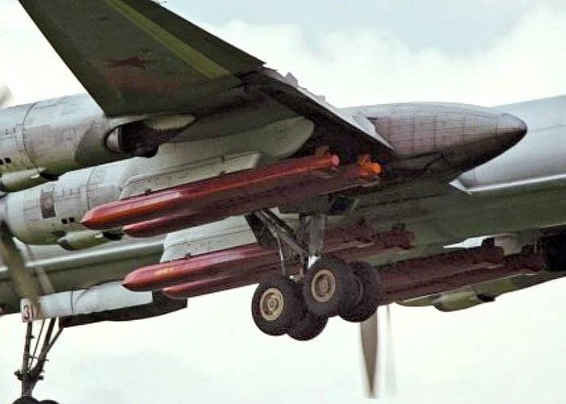 Ten lua hanh trinh Kh-101: Su ket tinh cua cong nghe quan su Nga-Hinh-8