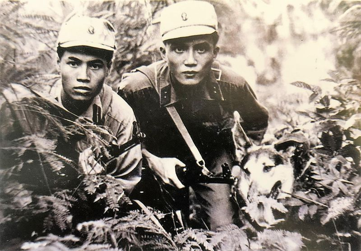 So phan ham hiu cua biet kich My, nguy trong Chien tranh Viet Nam (1)-Hinh-12