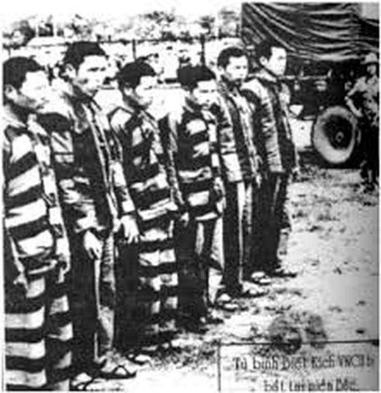 So phan ham hiu cua biet kich My, nguy trong Chien tranh Viet Nam (1)-Hinh-8