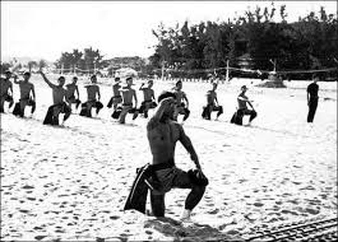 So phan ham hiu cua biet kich My, nguy trong Chien tranh Viet Nam (1)