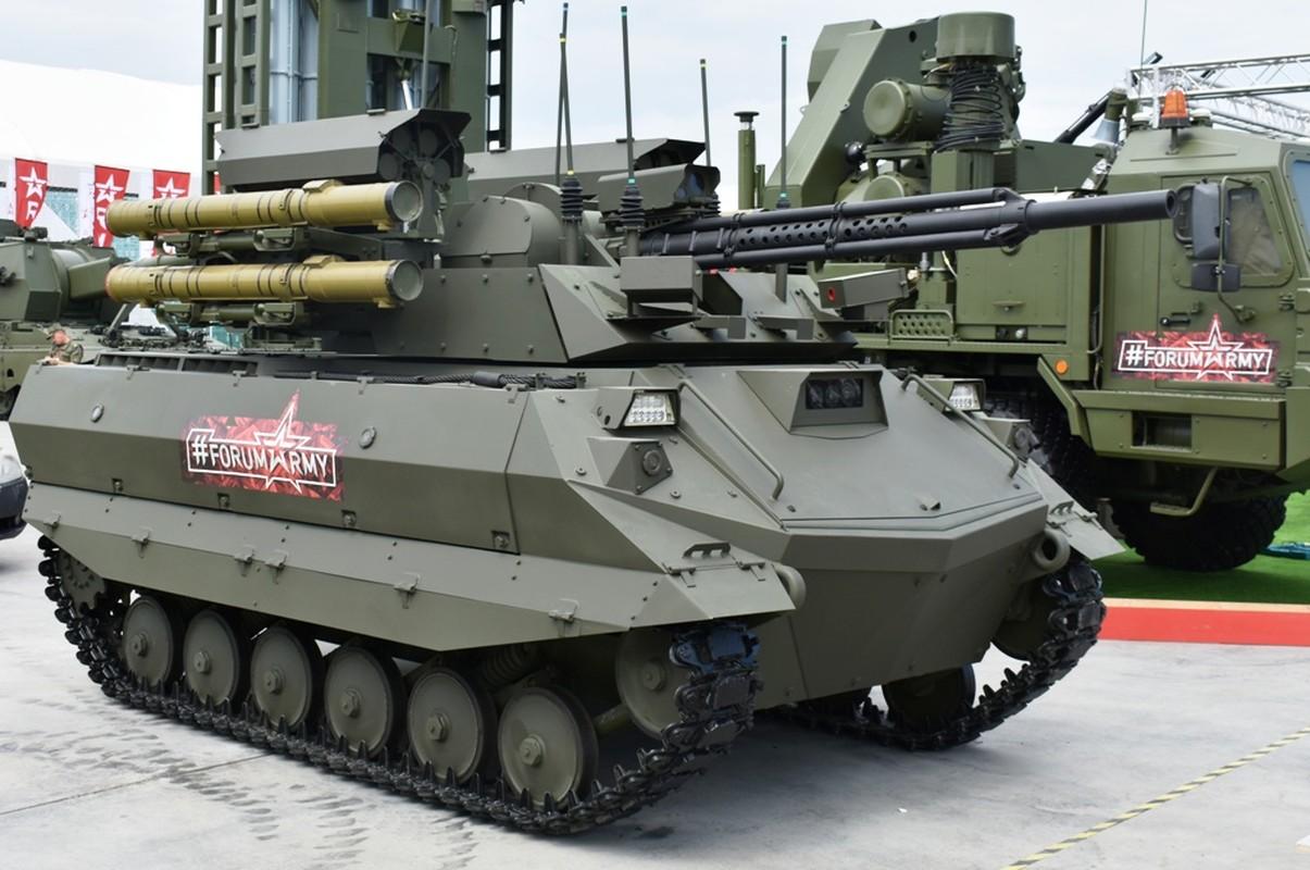 Bat ngo: Phap len tieng benh vu khi Nga, cho rang NATO qua bao thu-Hinh-14