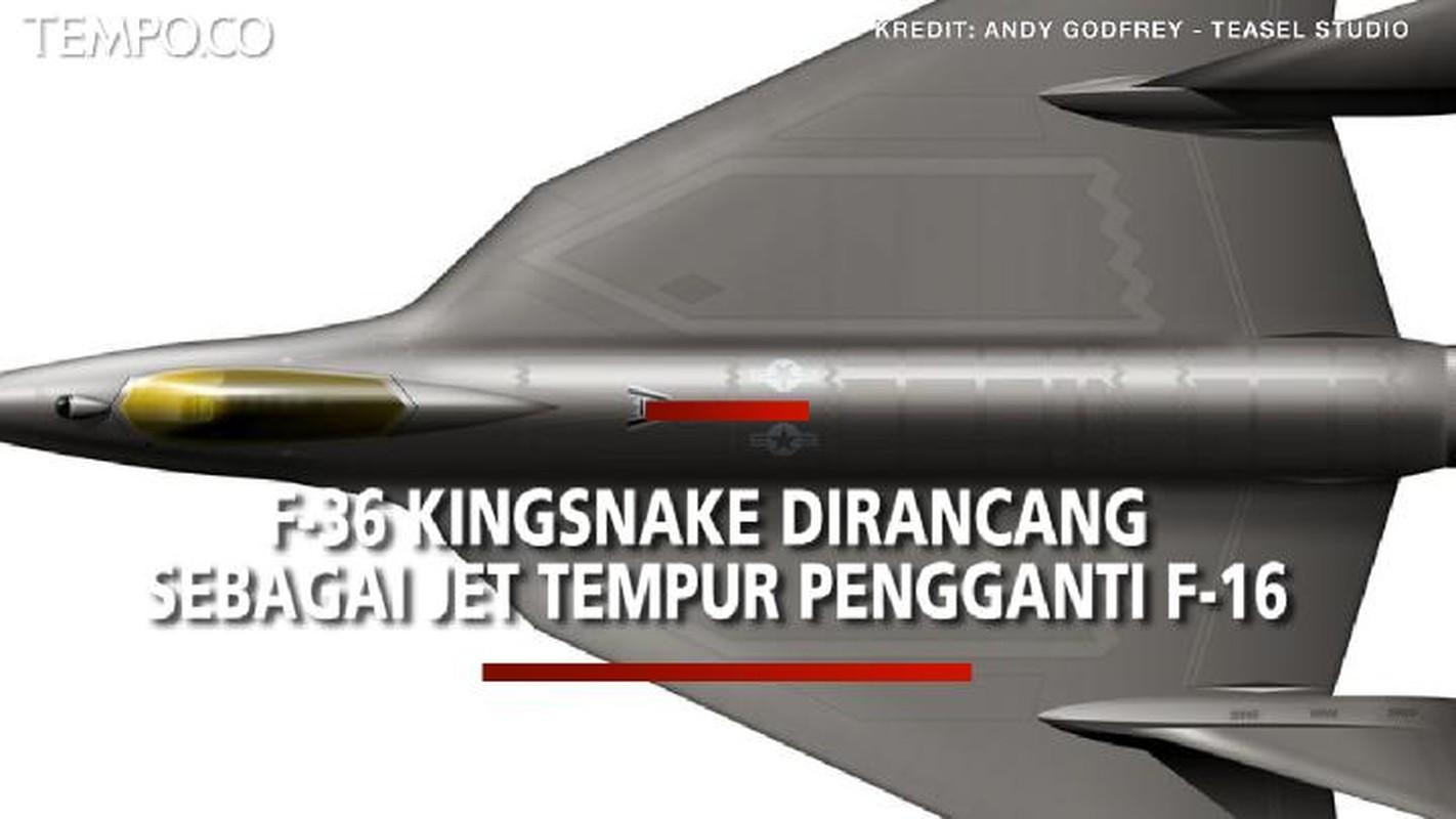 F-35 that bai tham hai, My tinh phat trien F-36 de thay the F-16-Hinh-12