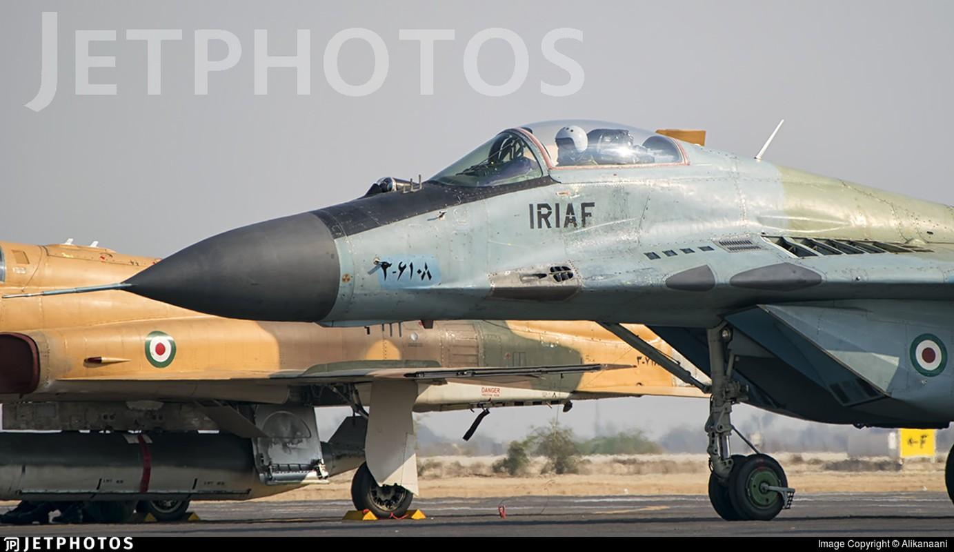 Chien dau co kem nhat cua Iran co nguon goc tu... Trung Quoc-Hinh-3
