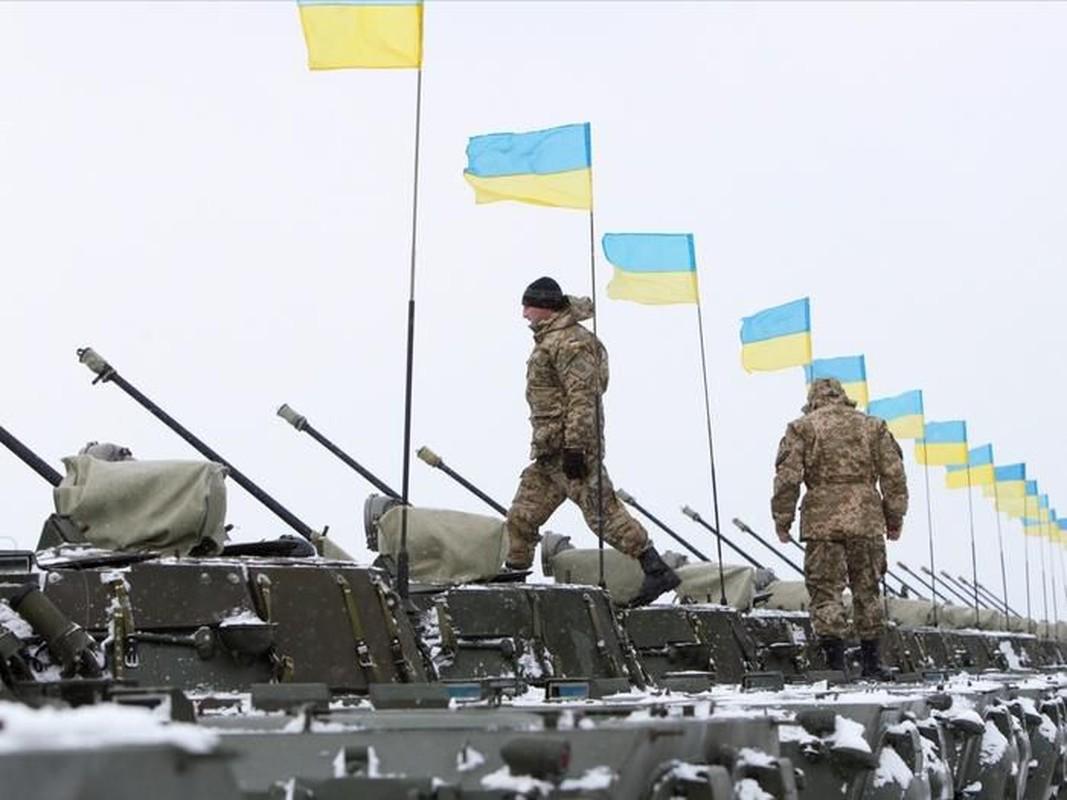 """Ukraine keo xe tang """"cay nha la vuon"""" toi bien gioi phe ly khai-Hinh-2"""