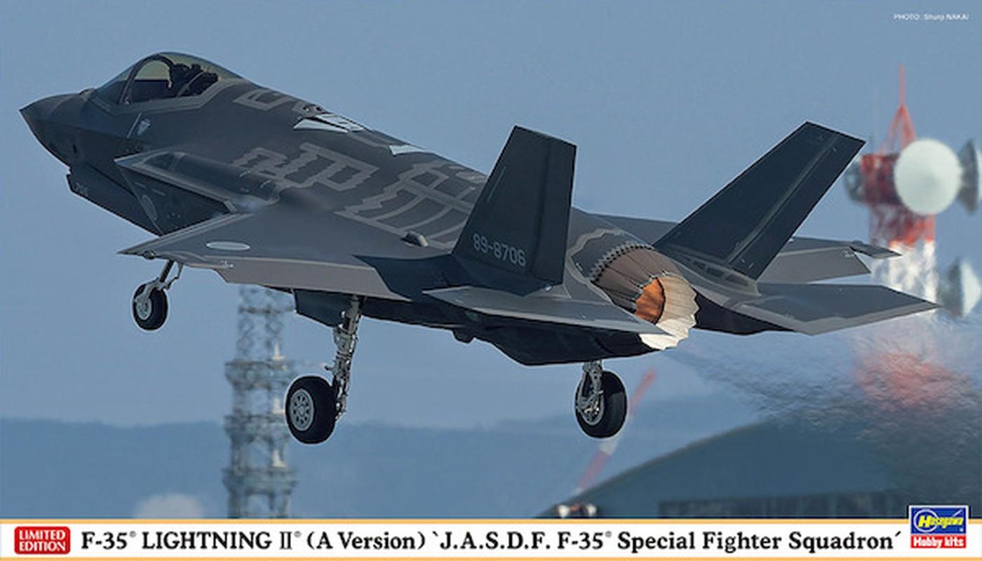 Nhat co thuc su can toi tiem kich F-35 de doi pho Trung Quoc?-Hinh-12